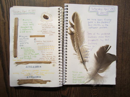 Nature Journal (by Pictures by Ann)