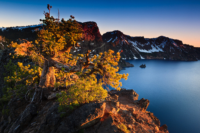 Crater Lake Bonsai Sunset by Jared Ropelato on Flickr.