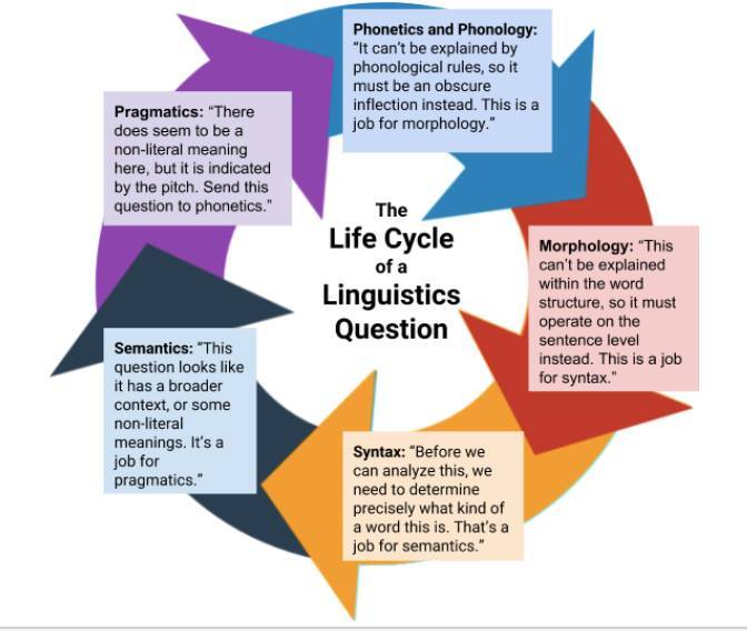 Image result for linguistics explained