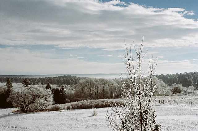 W. Snow by James Fitzgerald III on Flickr.