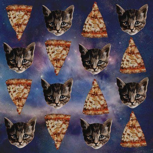 Pizza Cats!