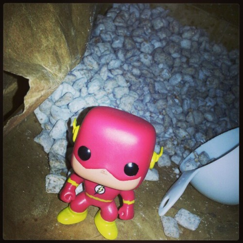 Flash bout to devour some puppy chow!!!! #theflash #dc #DCcomics #comics #toys #snacks #puppychow #hashtagITSCHOWTIME