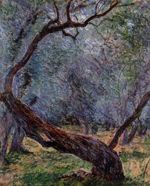 Study of Olive Trees by Claude Monet