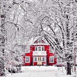snow winter eco home sweet home