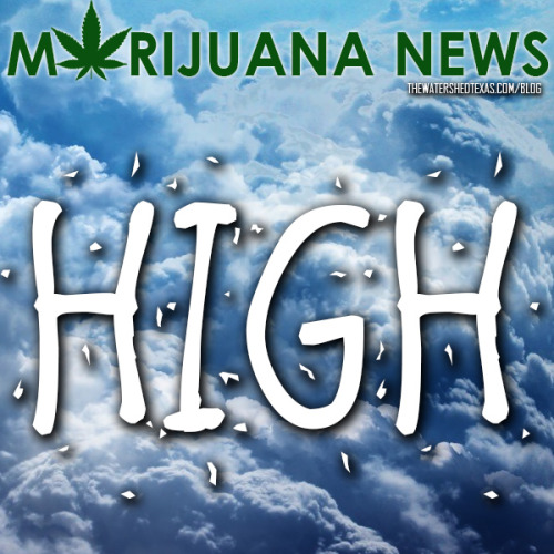 In recent marijuana news, a liquid marijuana drink has officially been created! Almost on the shelves in Wisconsin, the product has the media's attention.