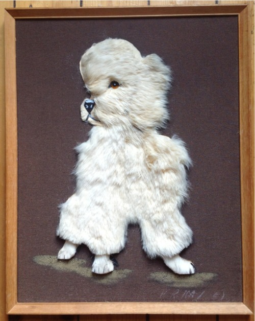 Vintage dog picture bought for me by Mr Finch. Sir I love you!!!