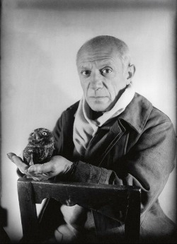 lomographicsociety:  Pablo Picasso and a Wee Little Owl Giving You a Look They are totally judging you.