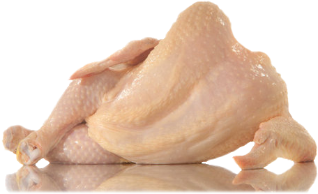 rolypolyincopacabana:  transparent sexy dead chicken 4 u