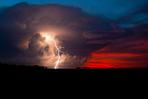 opticoverload:  10,000 Volt Sunset