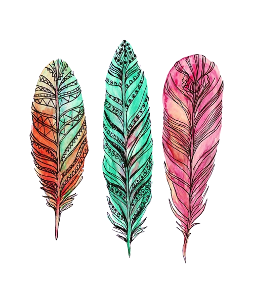 transparentfuture:  Feathers | via Tumblr on We Heart It. http://weheartit.com/entry/60875470/via/galaxyismylimit
