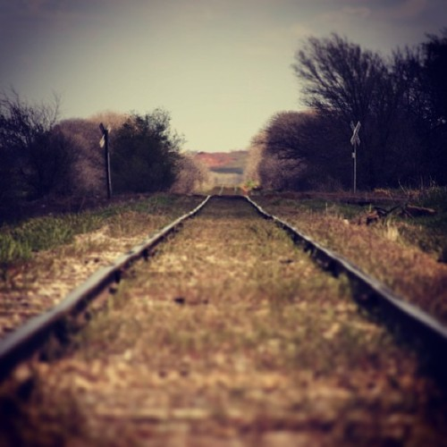 A Hobo's Yellow Brick Road #travel #train #tracks #railroad #transportation #adventure #explore #texas #instahub #instagreat #instagood #webstagram #contestgram #ink361 #picoftheday #bestofday #photooftheday #igers #wander #nikon #d7000 #teamnikon