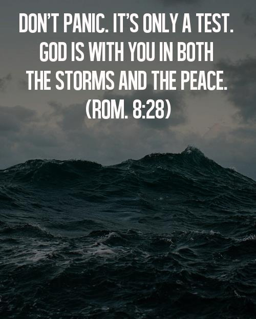 "spiritualinspiration:  ""And we know that God causes everything to work together for the good of those who love God and are called according to his purpose for them."" (Romans 8:28, NLT)  Everyone goes through things that don't seem to make sense. It's easy to get discouraged and wonder, ""Why did this happen to me?"" ""Why did this person treat me wrong?"" ""Why did I get laid off?"" But we have to understand, even though life is not always fair, God is fair. And, He promises to work all things together for good for those who love Him.  I believe the key word is this verse is ""together."" In other words, you can't just isolate one part of your life and say, ""Well, this is not good."" ""It's not good that I got laid off."" ""It's not good that my relationship didn't work out."" Yes, that's true, but that's just one part of your life. God can see the big picture. That disappointment is not the end. Remember, when one door closes, God has another door for you to walk through — a better door. Those difficulties and challenges are merely stepping stones toward your brighter future. Be encouraged today because God has a plan for you to rise higher. He has a plan for you to come out stronger. He has a plan to work all things together for your good so that you can move forward in the victory He has prepared for you!"