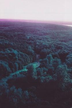 sky landscape Grunge nature forest scenery mystuff pastel Woods pastel grunge soft grunge