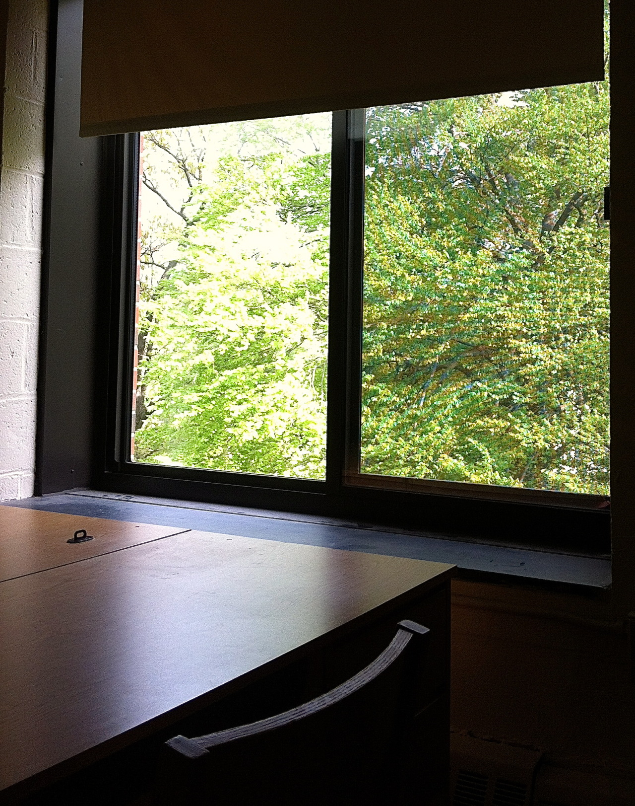 """Wow! You guys have such a perfect window seat,"" an RA said while checking me out of my room.  ""Yep,"" I said, barely paying attention. I was taking the last of my shit off the walls.  ""You ever just sit up here and read?"" She asked, patting the wide windowsill.  I turned around and cocked my head. On the windowsill…I had always thought of it as untouchable, no man's land, something to temporarily put a water bottle on, I don't know. I hadn't ever thought of that, and my roommate didn't either. ""No,"" I breathed, still looking at the windowsill.  She kept talking, I'm not sure what about. I can't believe I never thought of sitting on the windowsill. That's such a perfect place to read.  When she left a few minutes later, I climbed onto the windowsill, knees folded to my chest. I sat and stared out the window for 5 minutes until my cab came.  I think that's the only thing I regret about my freshman year."