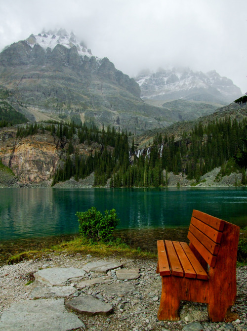 travelingcolors:  Lake O'Hara | Canada (by Steffen Sauder)