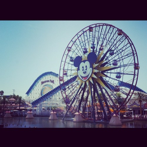allaboutmcfly:  I'd like to go back please !! #disney #california #fun #summer #rollercoaster #californiaadventure