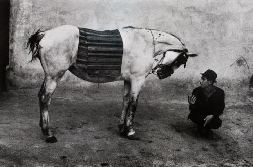 "artnet:  Gypsy and Horse Famed Czech photographer Josef Koudelka photographed social and cultural rituals, conveying an ineffable ""presence of the human spirit"" in his work.  Pictured is a late 1970s print from his renowned Gypsy Series, completed in 1968, just two days before the Russian invasion of Czechoslovakia."
