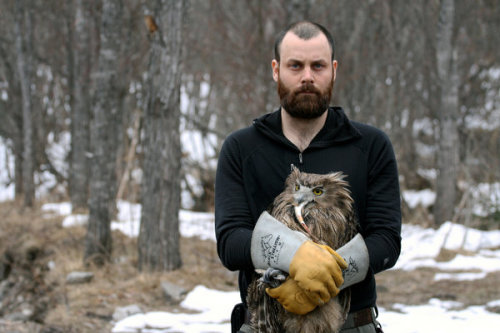 NYTimes has a dazzling, in-depth piece on owls. There is a video, a podcast, recordings of various calls, and interviews. Excellent.