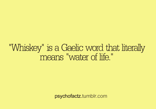 psychofactz:  More Facts on Psychofacts :)  Whiskey makes you frisky