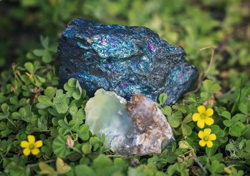minerals gemstones peacock ore chrysoprase naturespiritheart photography