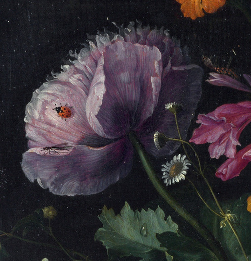 seabois:  Jacob van Walscappelle - Flowers in a Glass Vase