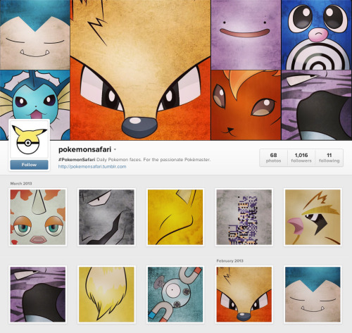 @POKEMONSAFARI on INSTAGRAM!