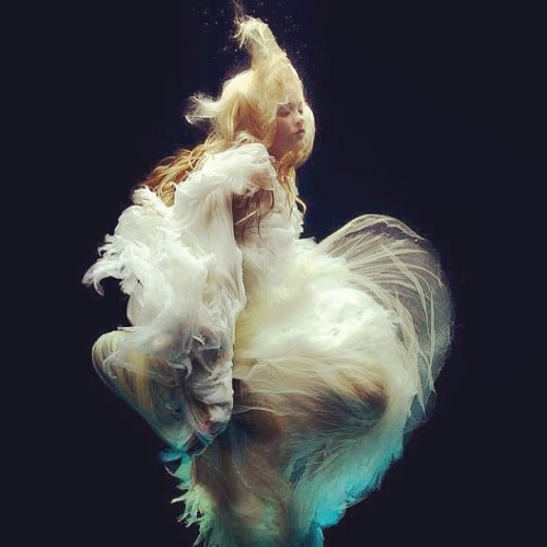 howaboutbeth:  Today's #inspiration is by Zena Holloway. These collection of #underwater shots are just beautiful. #beauty #dress #float #photographer #2013 #light