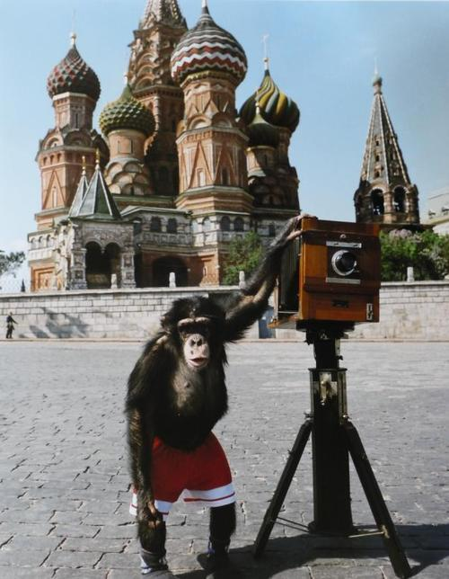 Photographs by Mikki the chimpanzee depicting blurry views of Moscow are estimated to fetch between $75,000–100,000 at Sotheby's.