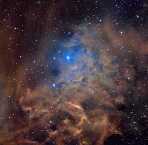 n-a-s-a:  AE Aurigae and the Flaming Star Nebula  Image Credit & Copyright: Martin Pugh  Beautiful universe.