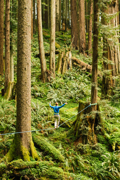 camerongardnerphoto:  Chris Lorimer walking among the giants.