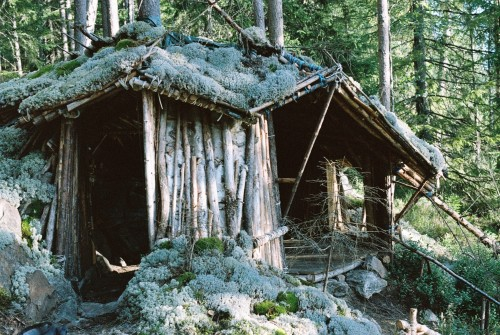 cabinporn:  Structure built from trees taken down by the local beaver in the woods outside of Oslo, Norway. Contributed by Steffen Oftedal.