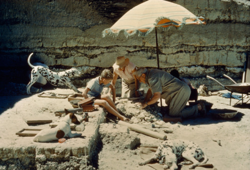 natgeofound:  Louis Leakey and his family inspect the campsite of an early hominid in Tanzania, November 1961.Photograph by Robert Sisson, National Geographic
