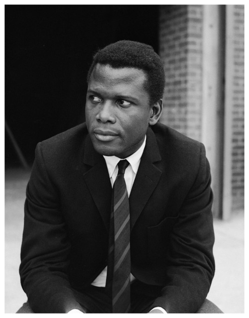 languagethatiuse:  Mr. Sidney Poitier.