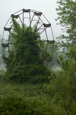 dearscience:  Abandoned Ferris wheel