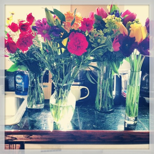 @allegra_wilde I should become a florist.