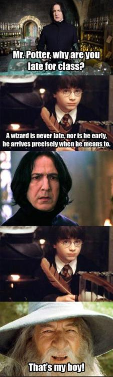 I would have *died* if Harry Potter had said that to Snape!
