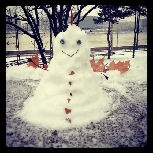 My little friend ⛄