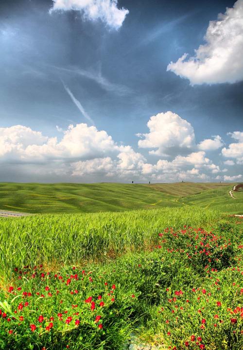 breathtakingdestinations:  Val d'Orcia - Tuscany - Italy (von mau_ry)