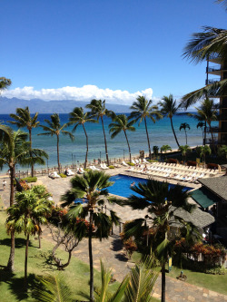 sexnoise:  sexpitch:  I MISS HAWAII AWW THIS WAS THE VIEW FROM MY BALCONY :(((  wanna go here omg