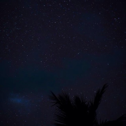 Nyepi Night Sky, Bali, Indonesia | #nyepi #bali #indonesia #night #nightsky #milkyway #nightshot #nightphotography #stars #sky #beauty  #finite  (at Kelapa Lovina Beach Villas)
