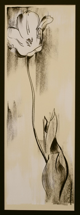 Richard Gnann IV Tulip 2013