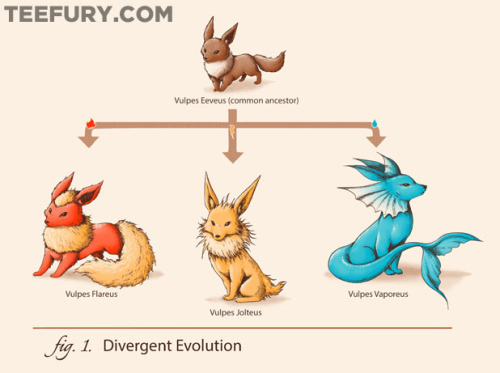 Divergent Evolution by ramyb - For sale on February 27th at Teefury US $10 for 24 hours only