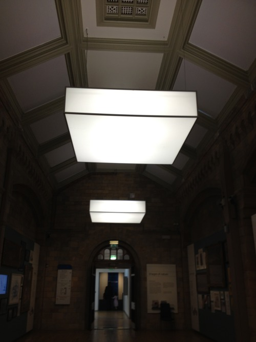 Square Luminaires,  Natural History Museum, London