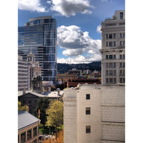 jessicareed:  i love this city