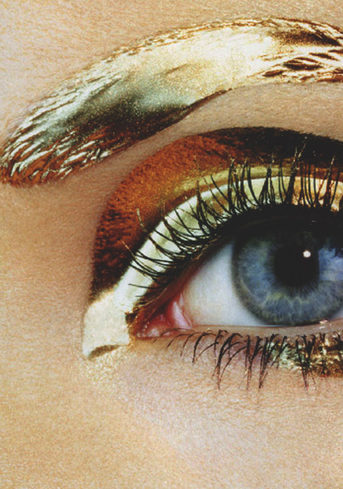 lisa cant by irving penn for vogue japan 2007