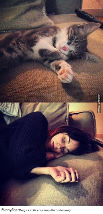 My girlfriend sleeps like a cat