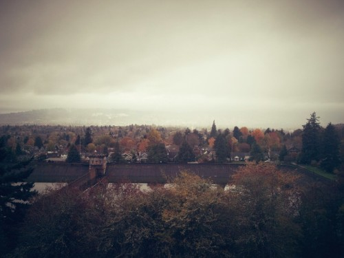 November 20, 2012 | Mount Tabor Reservoir—Portland, OR