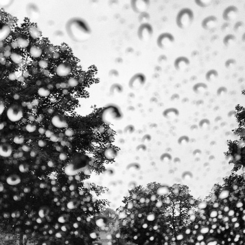 #rainyday #rva