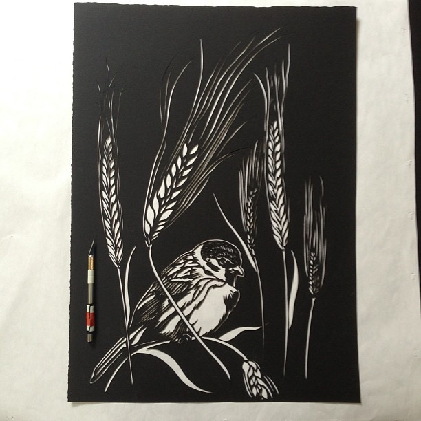 Good morning brain! Today: sparrow and the barley. Day 4 commission