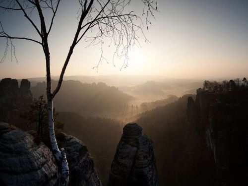 Sunrise, Saxony Photograph by Jens Elste